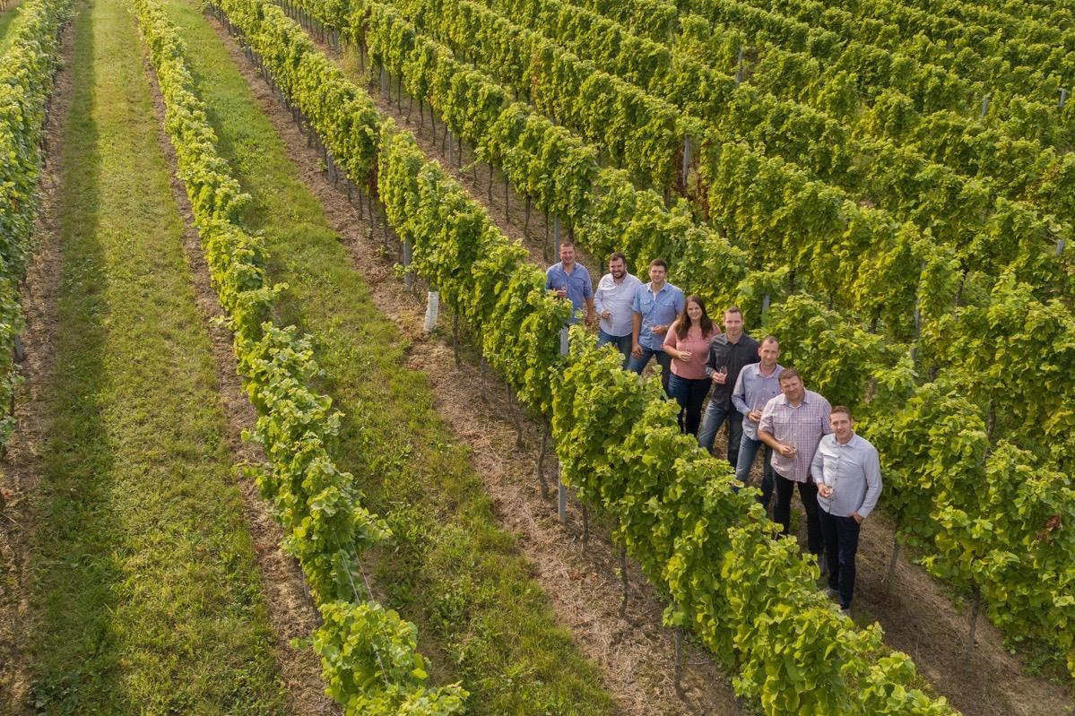 MLADO MEĐIMURJE – mladi međimurski vinari i ove godine tržište obogaćuju jedinstvenim mladim vinima