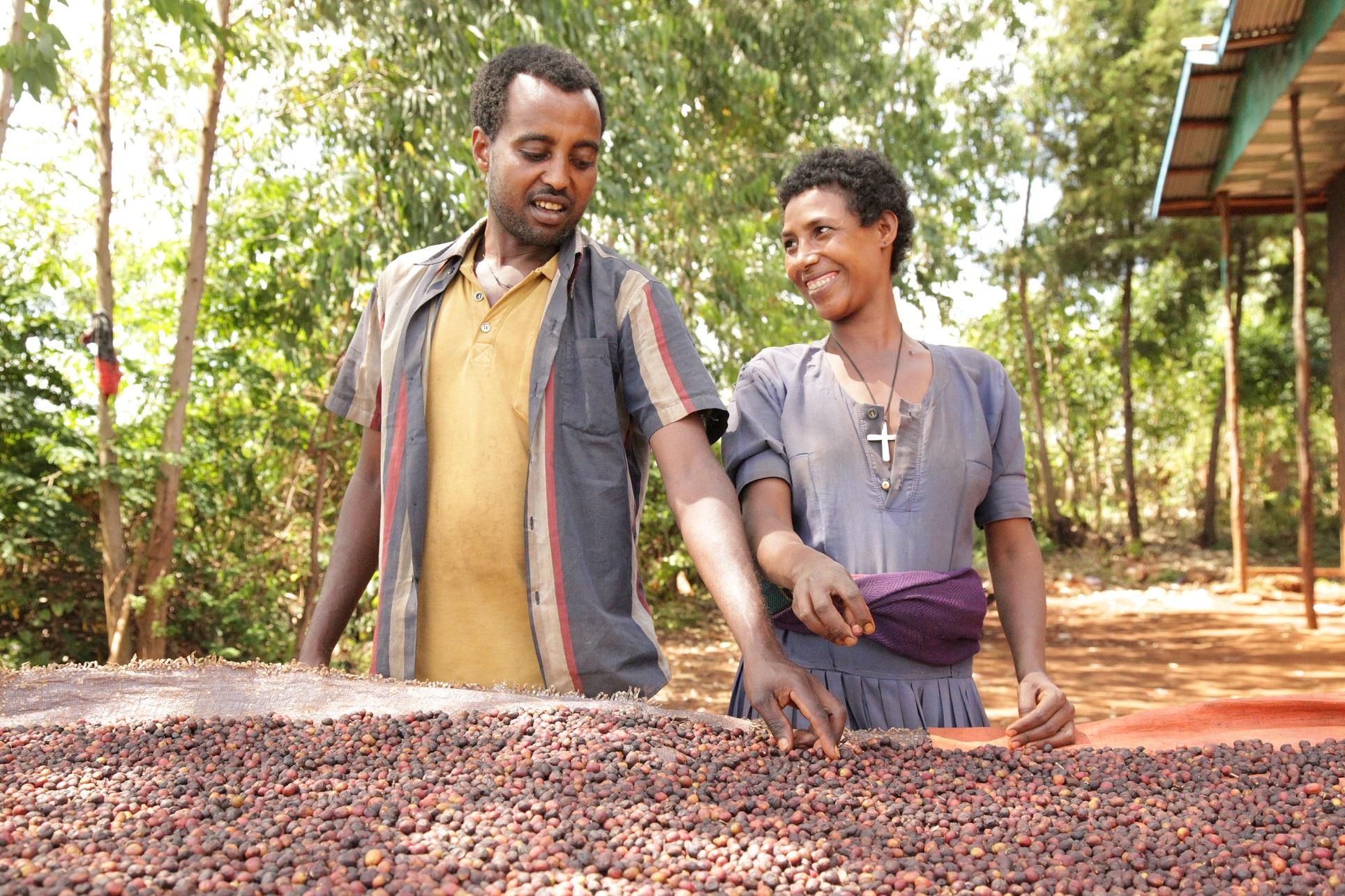 Udruženje Inernational Coffee Partners proširilo svoj rad i na ETIOPIJU