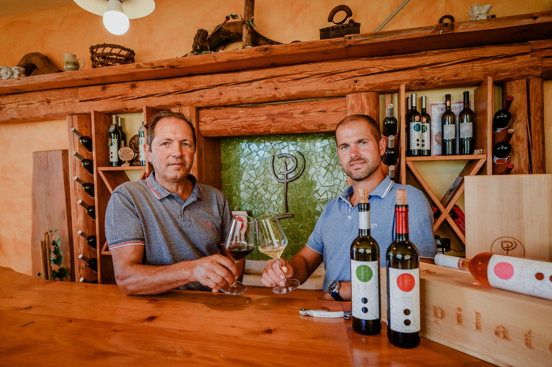 PILATO VINA – bez kvalitetnog rada u vinogradu nema ni dobrih vina